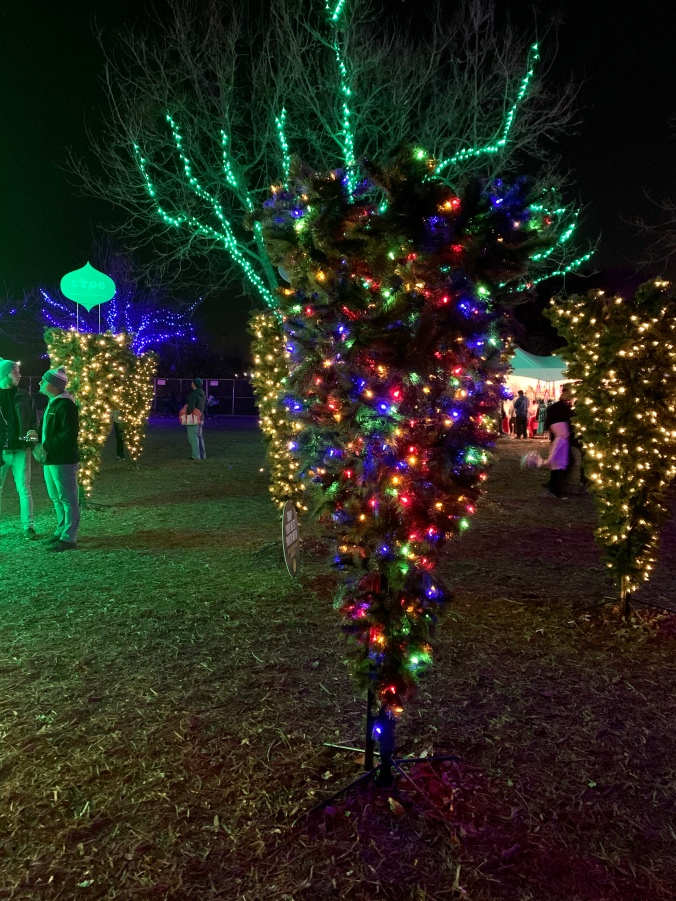 austin_trail_of_lights_7